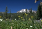 Lassen Peak From Kings Creek - Davies